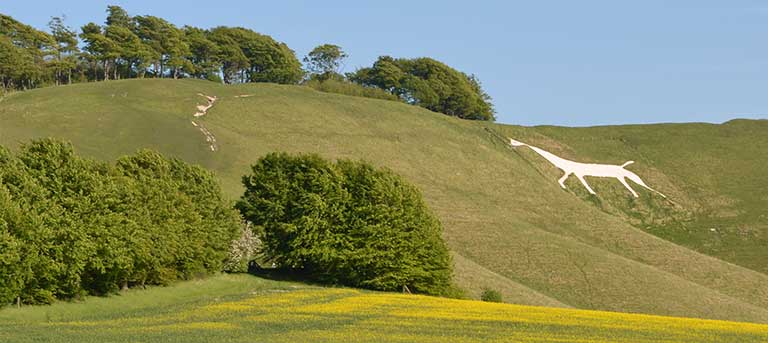 LOCAL ATTRACTIONS IN THE NORTH WESSEX DOWNS